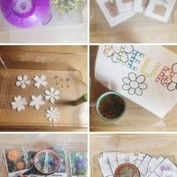 6 Plateaux montessori sur les fleurs!