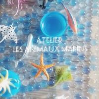 Atelier sur les animaux marins!